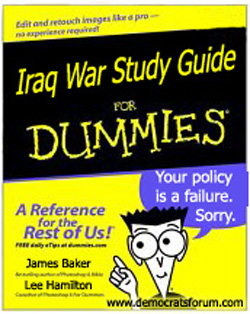 Iraq for Dummies book
