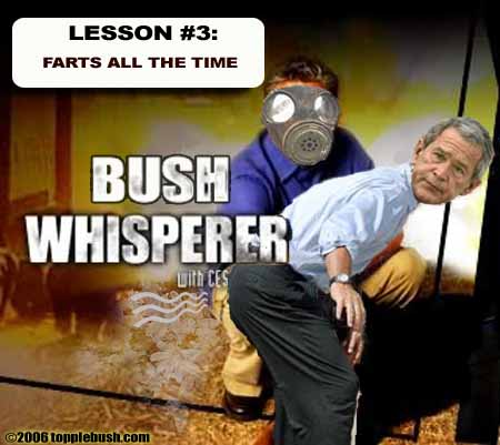Bush Whisperer Lesson #3
