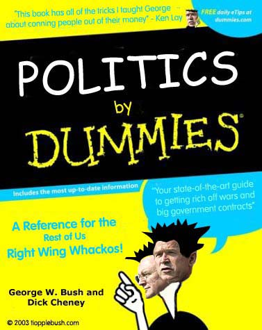 Politics by Dummies