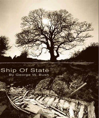 Ship of State