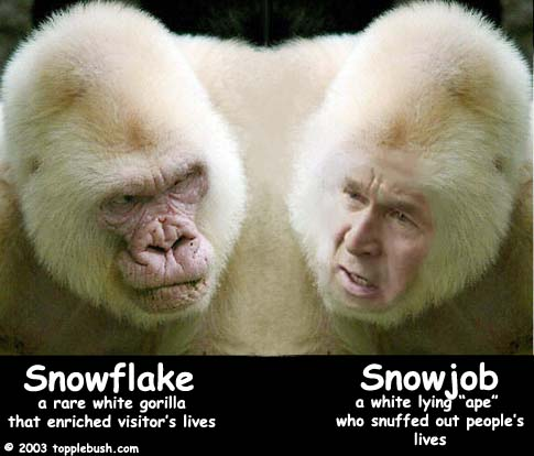 Snowflake and Snowjob