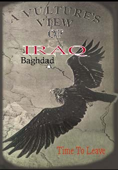 Vulture's view of Iraq