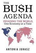 The Bush Agenda book